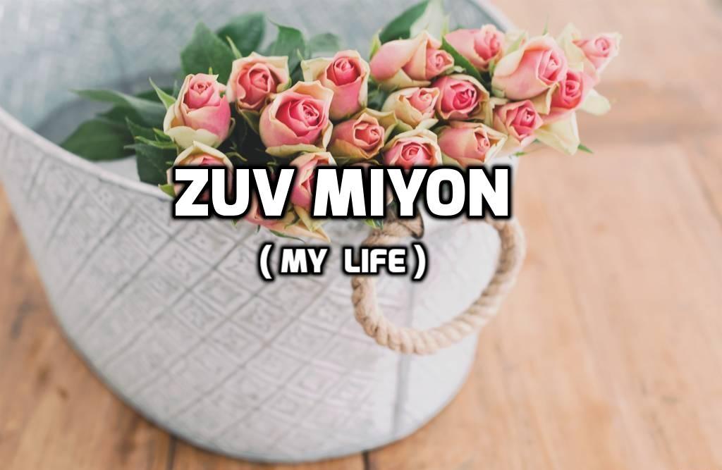 zov_miyon