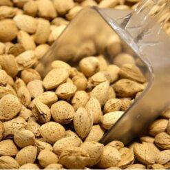 Kashmiri Almonds (Badam)